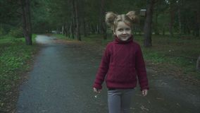 Retrato de la pequeña muchacha bonita en el parque del otoño almacen de metraje de vídeo