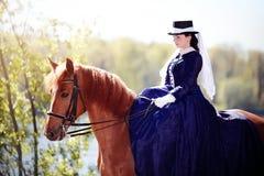Retrato de la señora en un caballo rojo Imágenes de archivo libres de regalías