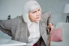 retrato de la señora gris del pelo con el dolor trasero y el bastón de madera que se sientan en silla imagen de archivo
