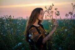 Retrato de la señora joven en un vestido bordado en el prado Imagen de archivo