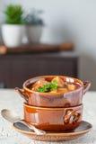 Retrato de la sopa del filete y de patata Imagenes de archivo