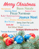 Retrato de la tarjeta de Navidad Imagen de archivo libre de regalías