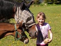 Retrato de la yegua y del potro de alimentación de la muchacha con pan Fotografía de archivo libre de regalías