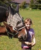 Retrato de la yegua y del potro de alimentación de la muchacha con pan Imagen de archivo