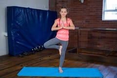 Retrato de la yoga practicante del adolescente Imagenes de archivo