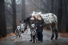 Retrato de las muchachas de los gemelos con el caballo del Appaloosa y los perros del dalmatian fotografía de archivo