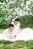 Retrato de los pares de la boda Imagen de archivo
