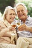 Retrato de los pares mayores que se relajan en Sofa With Glass Of Wine Imágenes de archivo libres de regalías