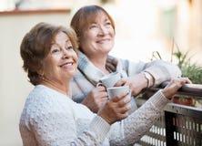 Retrato de los pensionistas femeninos felices positivos que beben té Imágenes de archivo libres de regalías