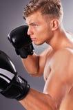 Retrato de los retrocesos practicantes del combatiente muscular hermoso Fotos de archivo libres de regalías