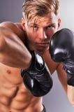 Retrato de los retrocesos practicantes del combatiente muscular hermoso Fotografía de archivo libre de regalías