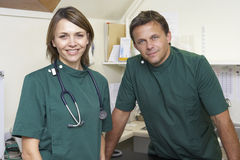 Retrato de los veterinarios de sexo masculino y de sexo femenino en cirugía Imagen de archivo
