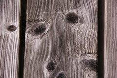Retrato de madeira Foto de Stock