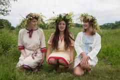 Retrato de meninas da beleza no chaplet da camomila imagem de stock royalty free