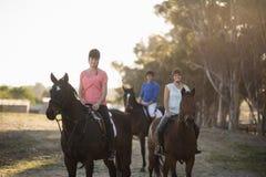 Retrato de mujeres con el caballo de montar a caballo del instructor Fotos de archivo