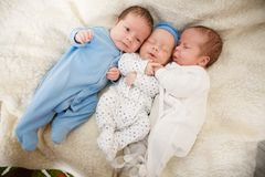 Retrato de objetivas triplas recém-nascidas Fotos de Stock Royalty Free