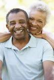 Retrato de pares afro-americanos superiores românticos no parque Imagem de Stock
