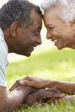 Retrato de pares afroamericanos mayores románticos en parque Foto de archivo