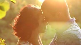 Retrato de pares felices en amor en la puesta del sol en parque almacen de metraje de vídeo