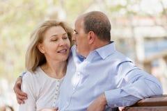 Retrato de pares maduros Foto de Stock Royalty Free