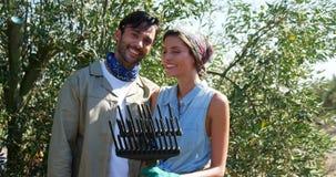 Retrato de pares sonrientes en la granja verde oliva 4k almacen de metraje de vídeo