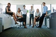 Retrato de profissionais incorporados no escritório Imagens de Stock Royalty Free