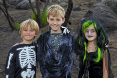 Retrato de tres amigos en el traje de Halloween Fotografía de archivo libre de regalías