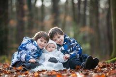 Retrato de tres muchachos, hermanos, en el bosque, otoño fotografía de archivo libre de regalías