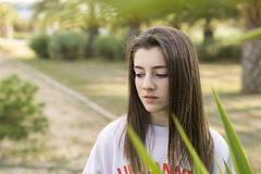 Retrato de um adolescente novo do adolescente de 15 anos Fotos de Stock