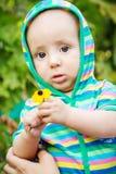 Retrato de um bebê bonito com uma flor Foto de Stock