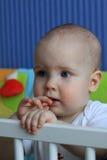 Retrato de um bebê de 11 meses Fotos de Stock Royalty Free