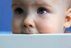 Retrato de um bebê de 11 meses Fotografia de Stock