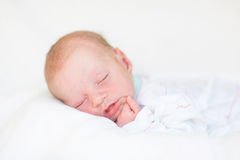 Retrato de um bebê de sono recém-nascido bonito Imagem de Stock