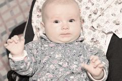 Retrato de um bebê idoso bonito de três meses Imagens de Stock Royalty Free