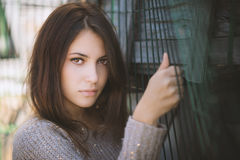 Retrato de um Brunette bonito Fotografia de Stock Royalty Free