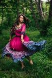 Retrato de um cigano bonito da menina imagem de stock