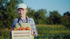 Retrato de um fazendeiro da mulher com uma caixa dos tomates Conceito dos legumes frescos vídeos de arquivo