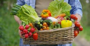 Retrato de um fazendeiro novo feliz que guarda legumes frescos em uma cesta Em um fundo da natureza o conceito do PR biológico, b Imagem de Stock
