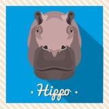 Retrato de um hipopótamo, hipopótamo do vetor Retratos simétricos dos animais Ilustração do vetor, cartão, cartaz ícone Fotografia de Stock