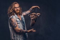 Retrato de um homem tattoed do moderno do ruivo com cabelo exuberante longo e a barba completa vestidos em posses de um t-shirt e foto de stock royalty free