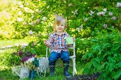 Retrato de um jardineiro novo imagem de stock