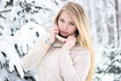Retrato de um louro bonito no inverno Fotos de Stock Royalty Free