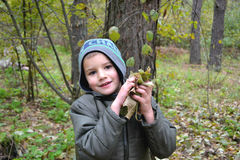 Retrato de um menino Imagem de Stock