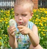 Retrato de um menino com dentes-de-leão. Foto de Stock