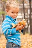 Retrato de um menino novo no parque do outono. Fotos de Stock Royalty Free