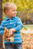 Retrato de um menino novo no parque do outono. Foto de Stock