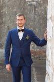 Retrato de um noivo considerável imagens de stock royalty free