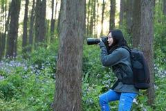 Retrato de um olhar chinês asiático do fotógrafo da mulher da natureza em sua tela da câmera em uma bordadura da floresta do parq fotos de stock royalty free