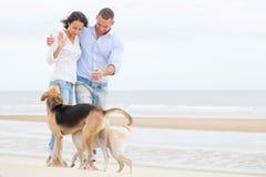 Retrato de um par feliz com cães Fotos de Stock Royalty Free