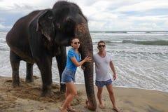 Retrato de um par novo feliz com um elefante no fundo de uma praia tropical do oceano imagem de stock royalty free